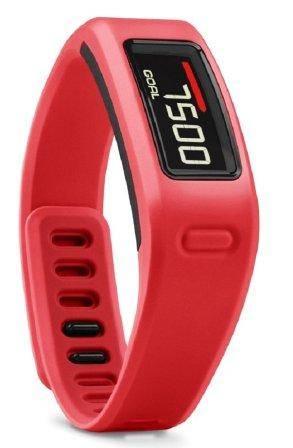 Reloj Pulsera de Fitness  de Gran Hermano 15 (GH15) modelo Garmin Vivofit